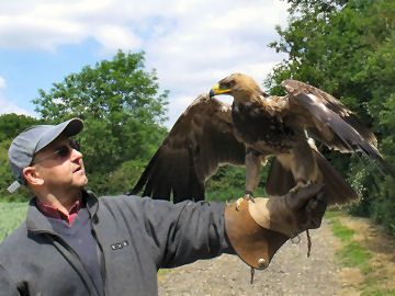 Andrew faces an Eagle